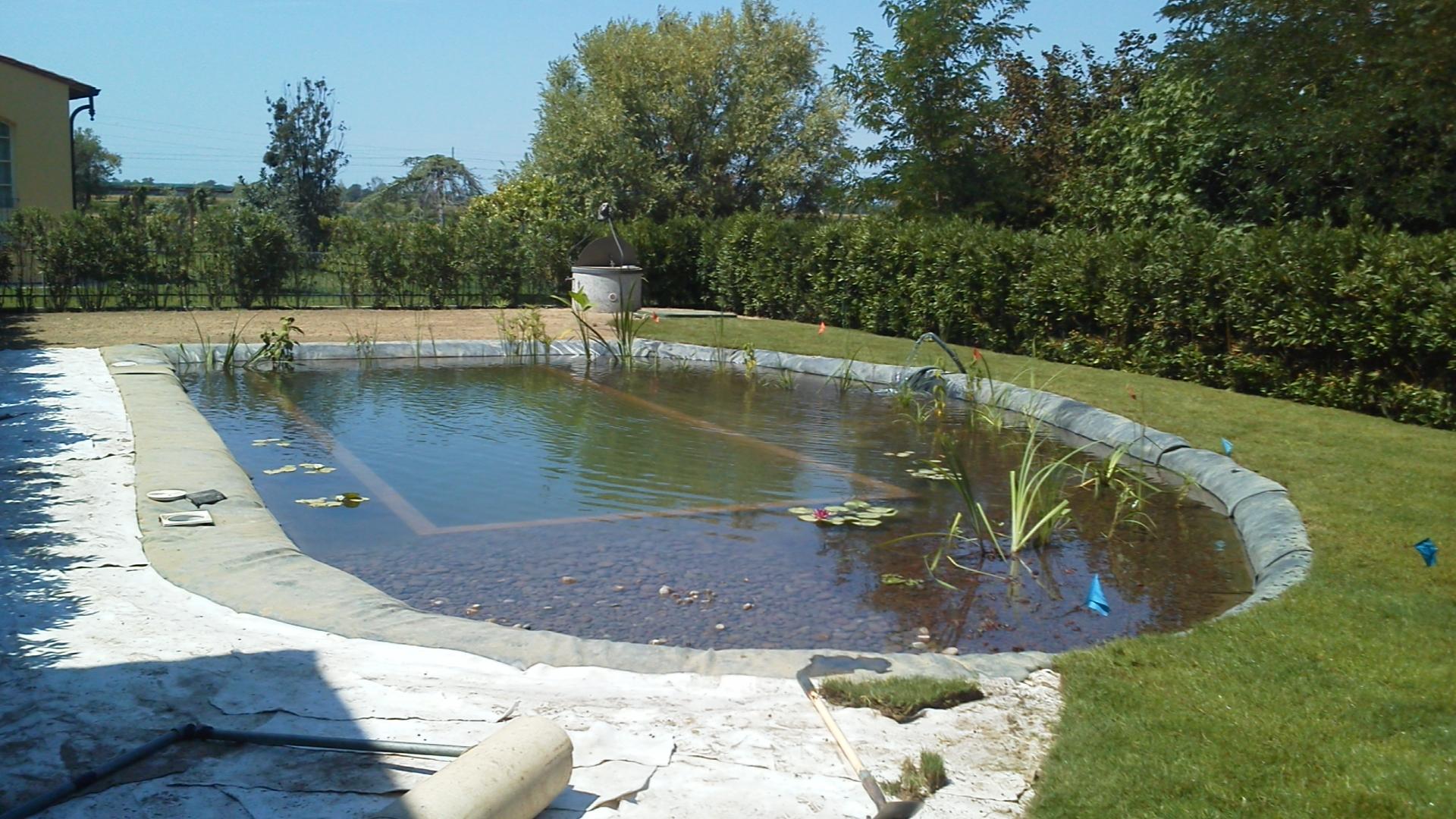 Stagni artificiali landscape design systems for Stagno artificiale giardino
